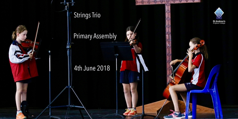 Strings Trio