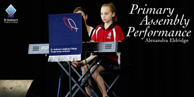 Primary Assembly Performance